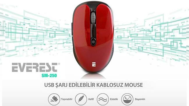 Everest SM-250 Kablosuz Mouse İncelemesi