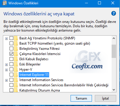 Windows 10 da İnternet Explorer Nasıl Devre Dışı Bırakılır