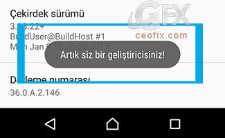 Android Geliştirici Seçenekleri-Devre Dışı Bırak-Etkinleştir