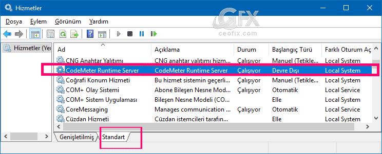 CodeMeter Runtime Server-ceofix.com