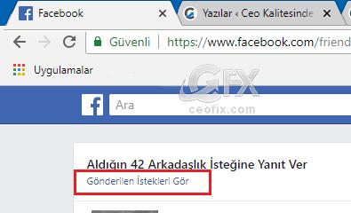 facebook gönderilen arkadaşlık istekleri