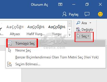Microsoft Word Belgesindeki yazı stilini Özelleştirme.