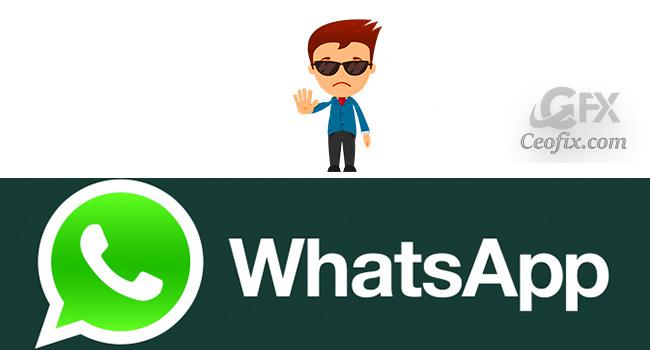 WhatsApp'da Mesajların Okundu Bilgisi İletilmesin (Mavi Tik)