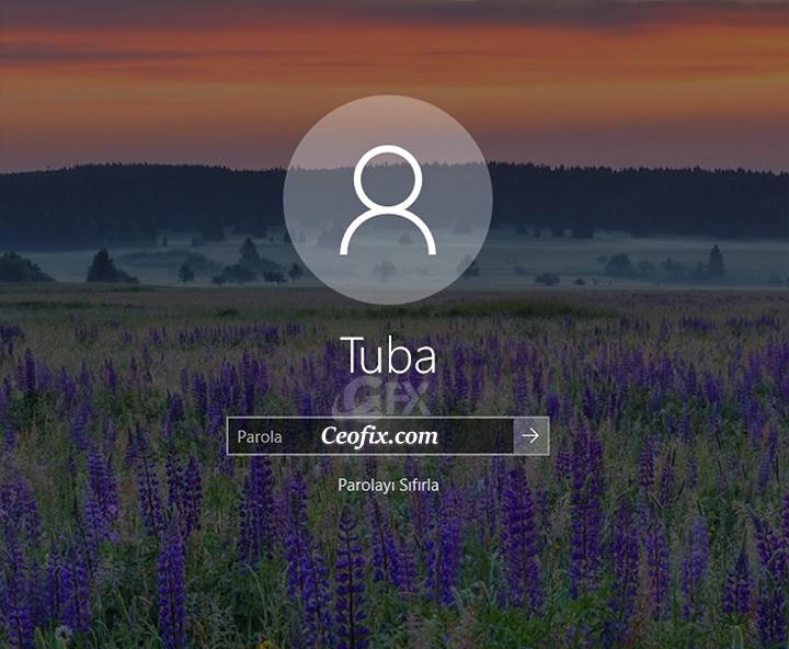 Windows 10'da Kolayca Güvenlik Sorularını Devredışı Bırak
