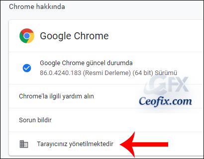 Chrome Hakkında
