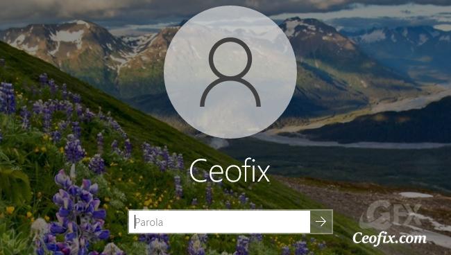Windows 10'da Giriş Ekranından Resim Çekmenin En Kolay Yolu